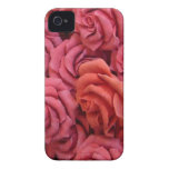 Pink roses iPhone 4 covers