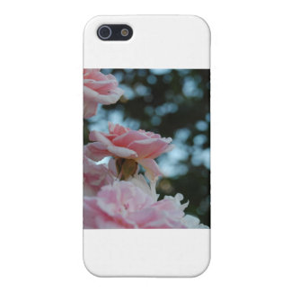 Pink Roses iPhone 5/5S Covers