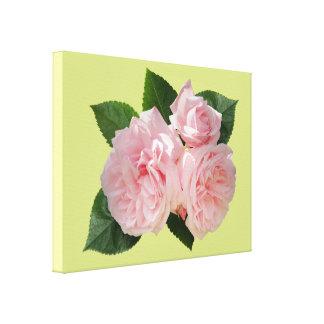 Pink Roses 'Octavia Hill' Canvas Print