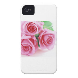 Pink Roses of Love iPhone 4 Cover