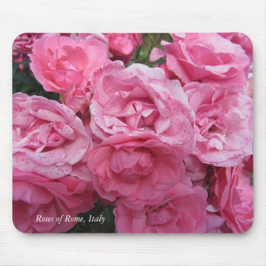 Pink Roses of Rome, Italy Mouse Pad