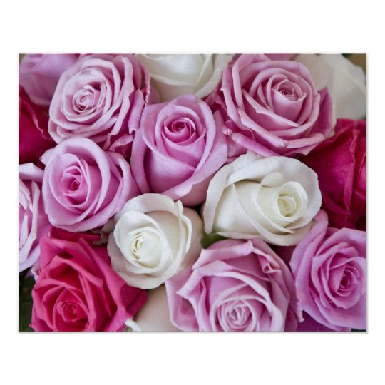 Pink Roses on canvas Poster