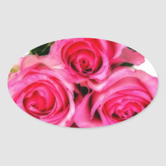 Pink Roses Oval Sticker