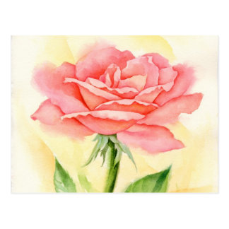 Pink Roses Painting Art - Multi Postcard