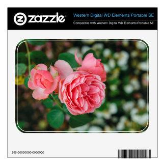 Pink roses WD elements SE skins