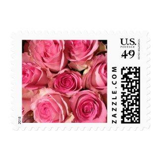 Pink Roses Stamp