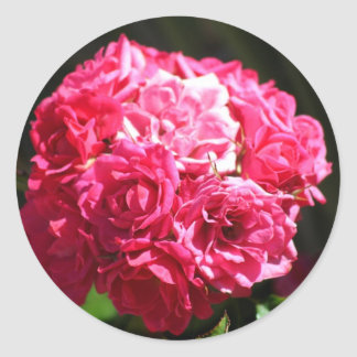 Pink Roses stickers