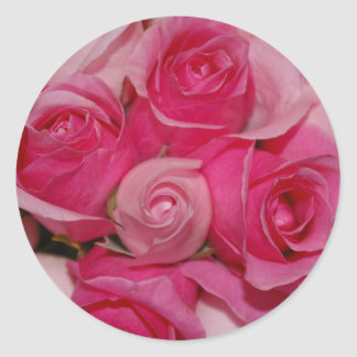 Pink Roses - Stickers