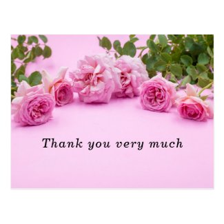 Pink roses Thank you card on pink background