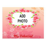 Pink Roses Valentine Add Your Photo Post Card