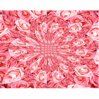 """Pink Roses """"Warp"""" #5 Photo Cut Out"""
