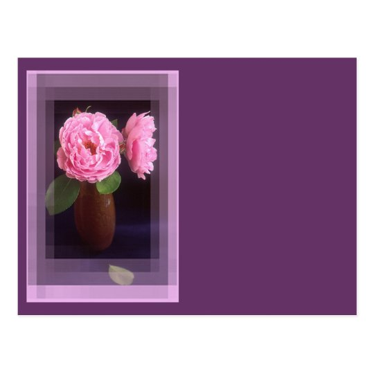 Pink Roses With Border Postcard