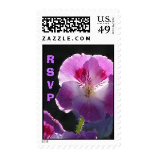 Pink RSVP On Black Postage
