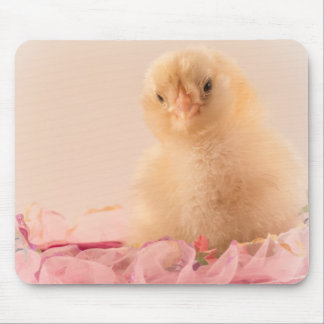 Pink Ruffle Baby Chick Photo Mouse Pad