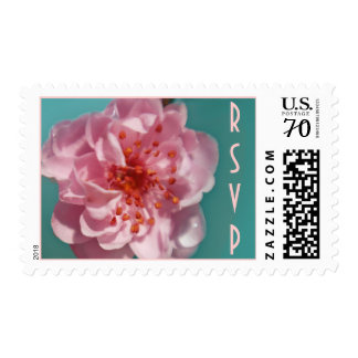 Pink Sakura, RSVP, customizable text Postage