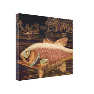 Pink Salmon Canvas Print