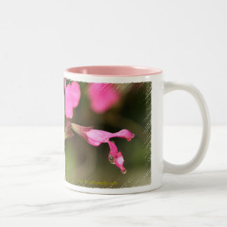 Pink Salvia Coffee Mug