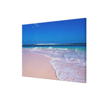 Pink sand beach at Conch Bay, Cat Island, Canvas Print