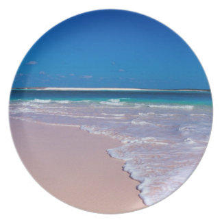 Pink sand beach at Conch Bay, Cat Island, Dinner Plate