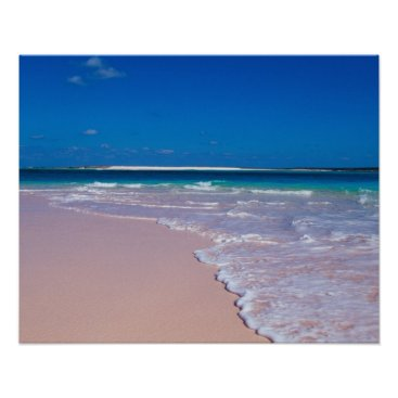 Beach Themed Pink sand beach at Conch Bay, Cat Island, Poster