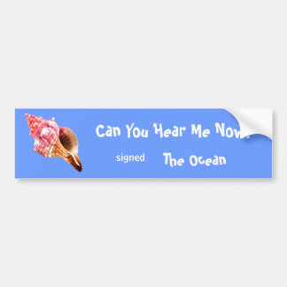 Pink Sandy Conch Shell Bumper Stickers