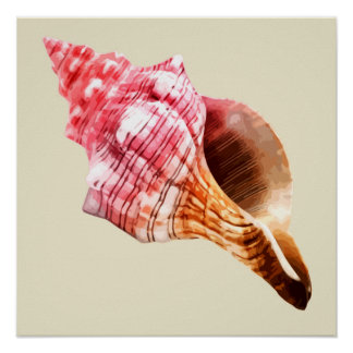 Pink Sandy Conch Shell Poster
