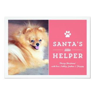 Pink Santa's Helper- Pet Photo Holiday Cards