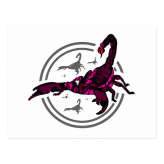 PINK Scorpion Postcard