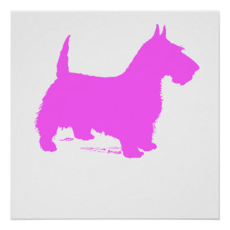 Pink Scottie Silhouette Poster