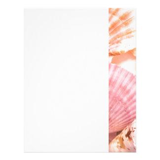Pink Seashells Letterhead