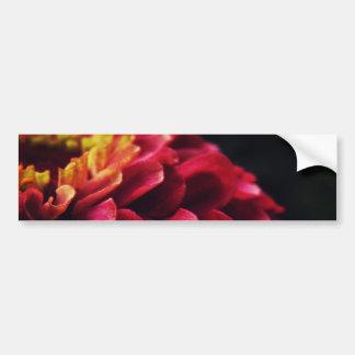 Pink Secret Bumper Sticker
