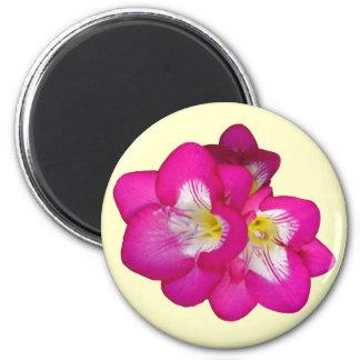 Pink Sensation Magnet