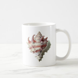 Pink Shell Mugs
