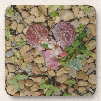 pink shells and flower heart coaster