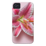 Pink Single Stargazer Lily iPhone 4 Case-Mate Cases