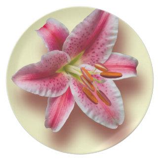 Pink Single Stargazer Lily Plate