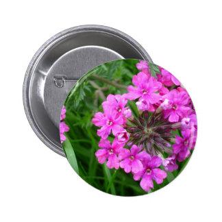 Pink Sissinghurst Button