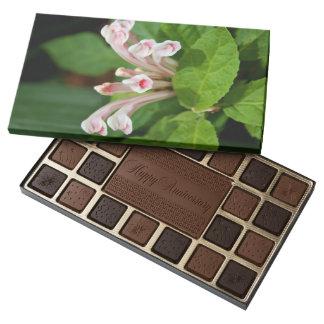 Pink Skullcap Box of Chocolate 45 Piece Assorted Chocolate Box