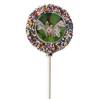 Pink Skullcap Oreo Cookie Pop