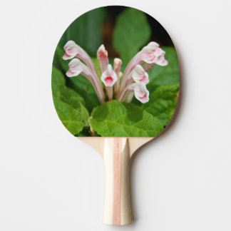 Pink Skullcap Ping Pong Paddle