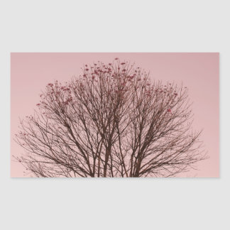 Pink Sky and Tree Branches Rectangular Sticker
