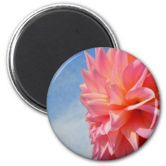 Pink Sky Magnet