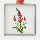 Pink Snapdragon Drawn From Nature Square Metal Christmas Ornament
