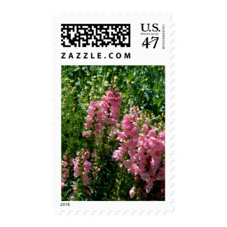 Pink Snapdragons and Chamomile Stamp