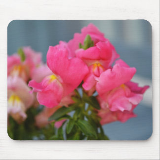 Pink Snapdragons Mouse Pad