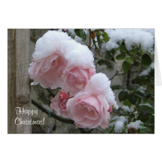 Pink snow covered roses Xmas Card