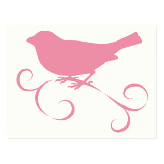 Pink Sparrow with Ribbon Postcards