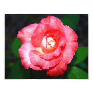 Pink splendor custom invitation