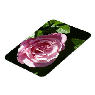Pink Splendor Rose Magnet