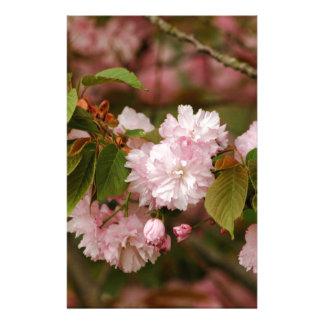 Pink Spring Blooming Japanese Kwanzan Cherry Stationery Design